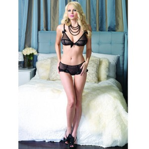 Leg Avenue Sheer Bra And Retro Briefs